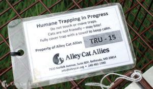 A tag on a humane box trap